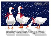Kate, CHRISTMAS ANIMALS, WEIHNACHTEN TIERE, NAVIDAD ANIMALES, paintings+++++,GBKM02,#xa# ,goose,geese,