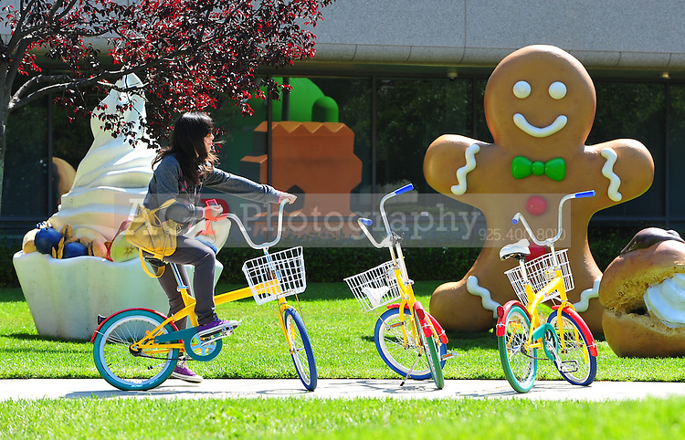 Sept. 6, 2011 - Mountain View, California - U.S. -  A woman rides a bicycle parked at the Google world headquarters in Mountain View, California Monday September 5, 2011.  (Credit Image: Alan Greth/ZUMAPress.com).