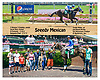 Speedy Mexican winning at Delaware Park on 7/3/17