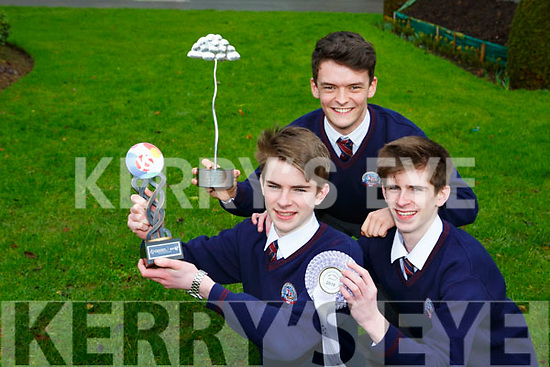 St Brendans College students l-r: Oran O'Donoghue, James and Harry Knoblauch celebrate after their project 'An Investigation into Conformity and how minorities can influence it' won at the BT Young Scientist of the year competition
