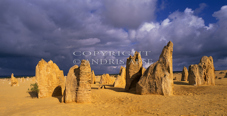 Sandstone formations in Nambung National Park. The Pinnacles. Western Australia. Australia.