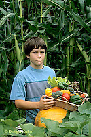 HS18-103z  Boy harvesting vegetables -  tomato, cucumber, carrot, squash, broccoli, lettuce, pumpkin