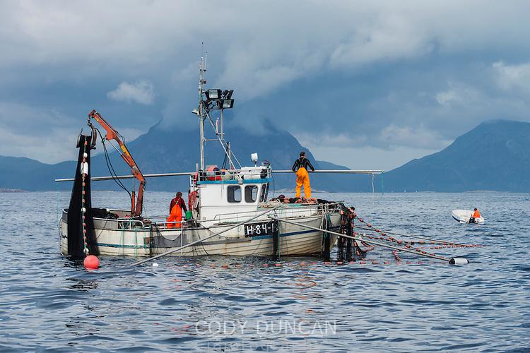 Mackerel fishing boat in Vestfjord off southern coast of Vestvågøy, Lofoten Islands, Norway