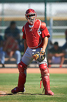 Cincinnati Reds minor league catcher Jose Ortiz #59 during an instructional league game against the Cleveland Indians at the Goodyear Training Complex on October 8, 2012 in Goodyear, Arizona.  (Mike Janes/Four Seam Images)