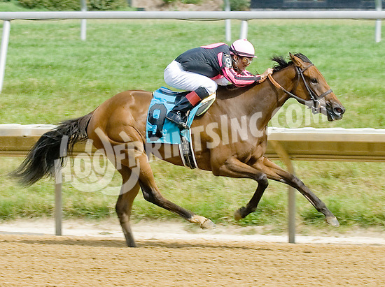 Flatter Me Up winning at Delaware Park on 7/5/12