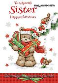 John, CHRISTMAS ANIMALS, WEIHNACHTEN TIERE, NAVIDAD ANIMALES, paintings+++++,GBHSSXC50-1007A,#XA#