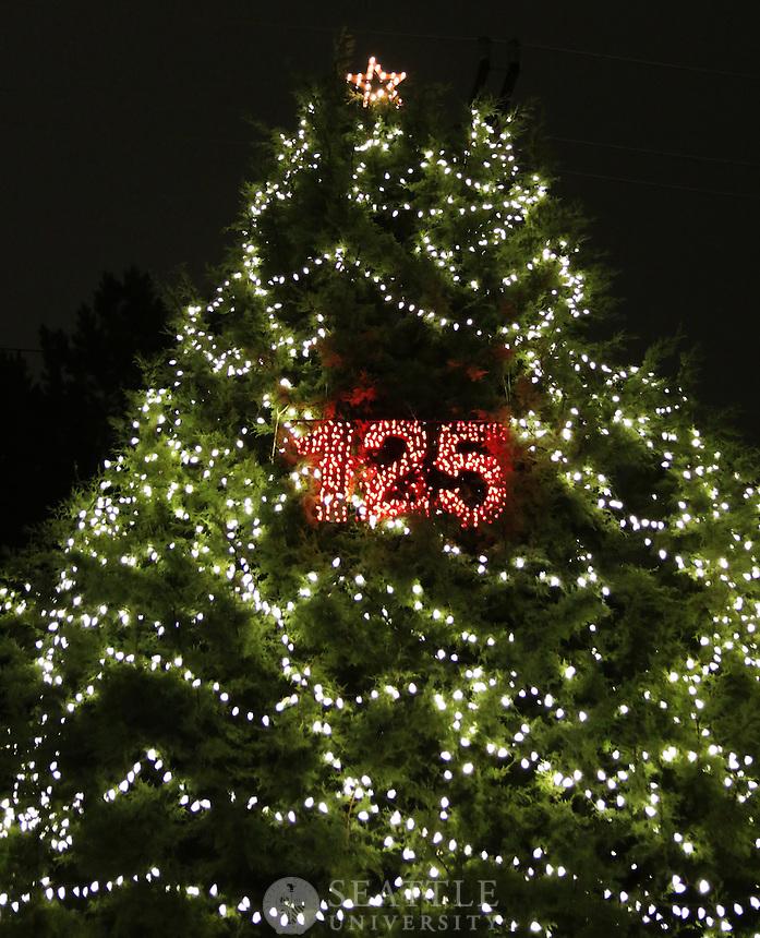 November 1st, 2016  Christmas Tree Lighting Ceremony