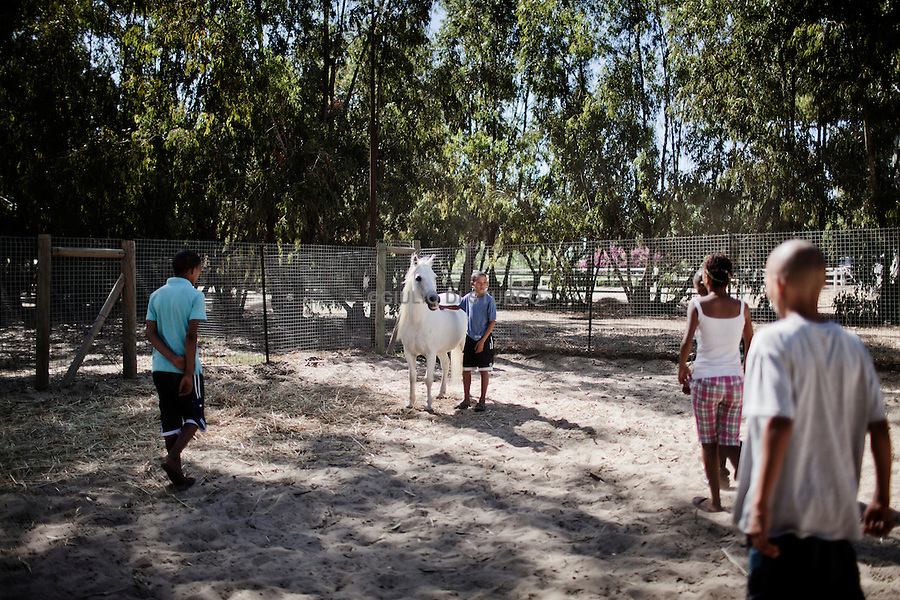 CAPE TOWN, SOUTH AFRICA JANUARY 2011:<br />