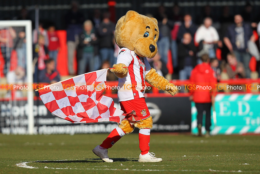 Stevenage mascot Boro Bear - Stevenage vs Newport County - Sky Bet League Two Football at the Lamex Stadium, Broadhall Way, Stevenage - 07/03/15 - MANDATORY CREDIT: Gavin Ellis/TGSPHOTO - Self billing applies where appropriate - contact@tgsphoto.co.uk - NO UNPAID USE