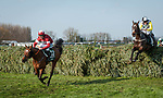 LIVERPOOL - APRIL 14: Tiger Roll #13, ridden by Davy Russell, jumps the final fence ahead of #21 Pleasant Company on his way to winning the Randox Health Grand National Steeplechase at Aintree Racecourse in Liverpool, UK (Photo by Sophie Shore/Eclipse Sportswire/Getty Images)