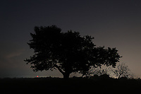 Moonrise and night exposures over trees in a field.. Photo/Andrew Shurtleff Photography, LLC