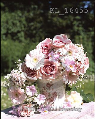 Interlitho, FLOWERS, BLUMEN, FLORES, photos+++++,rosa flowers, pot,KL16455,#F#