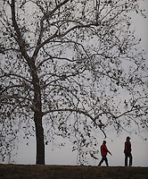 NWA Media/ANDY SHUPE - Walkers make their way past a sycamore tree early Sunday, Dec. 28, 2014, while exercising along the Lake Fayetteville Trail.