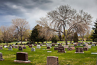 A brooding sky hovers over headstones and a leafless tree.