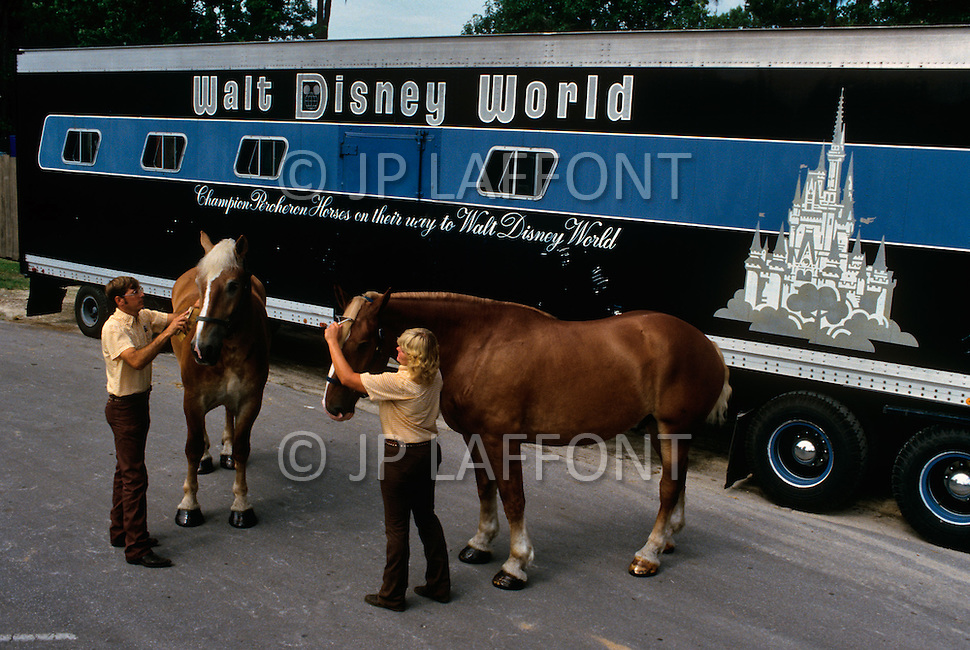 Orlando, Florida - Circa 1986. Champion Percheron Horses arrive at Walt Disney World (now known as Disney World). Disney World is a world-renowned entertainment complex that opened October 1, 1971 in Lake Buena Vista, FL. Now known as the Walt Disney World Resort, the property covers 25,000 acres and has an annual attendance of 52.5million people.