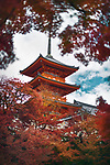 Kiyomizu-dera Sanjunoto pagoda surrounded by red leaves of Japanese maple trees. Autumn in Kiyomizu-dera Buddhist temple, Kyoto, Japan 2017.