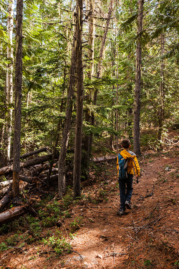 An active seven year old boy explores a trail near Priest Lake, Idaho in Bonner County.
