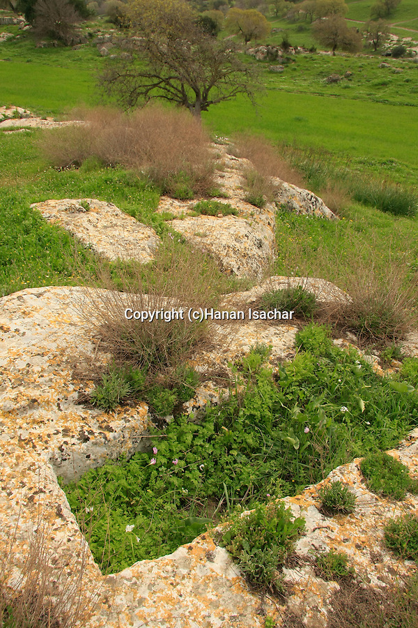 Israel, Jezreel Valley, a curved rock in Tel Shimron