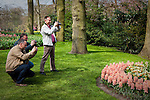 Three men photographing flowers at the Keukenhof tulip and flower show in Lisse, Holland - Netherlands Editorial Use only.