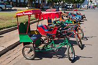 Africa, Madagascar, Ambositra city. The Zafimaniry tribe people . Man with rickshaw.
