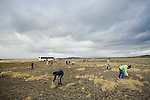 Students on the Cape Farewell Youth expedition sow the seeds of birch in the Iceland landscape. The Iceland landscape is eroding at an alarming rate and by planting trees, the authorities hope to stem this erosion. The expedition was organized by the British Council of Canada.