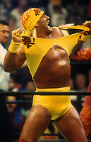 Hulk Hogan 1995<br /> John Barrett/PHOTOlink.net