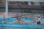 LOS ANGELES, CA - DECEMBER 03:  Matt Farmer (12) of the University of California Los Angeles celebrates during the Division I Men's Water Polo Championship held at the Uytengsu Aquatics Center on the University of Southern California campus on December 3, 2017 in Los Angeles, California. UCLA defeated USC 5-7 to win the National Championship. (Photo by Justin Tafoya/NCAA Photos via Getty Images)