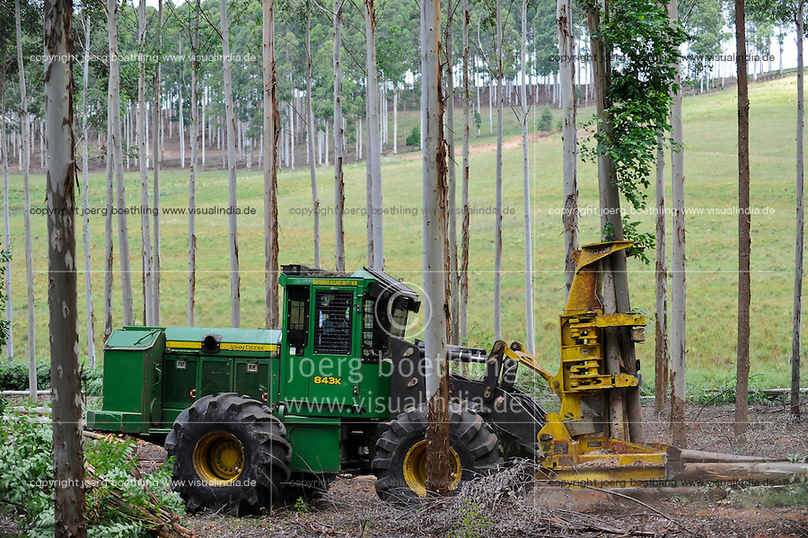 URUGUAY Rivera , FSC eucalyptus forest of company Urufor for timber , pulp and biomass use, wood harvester Timber Jack from John Deere Company / URUGUAY Rivera , FSC Eukalyptus Forst der Firma Urufor fuer Holz , Zellulose sowie Biomasse Nutzung