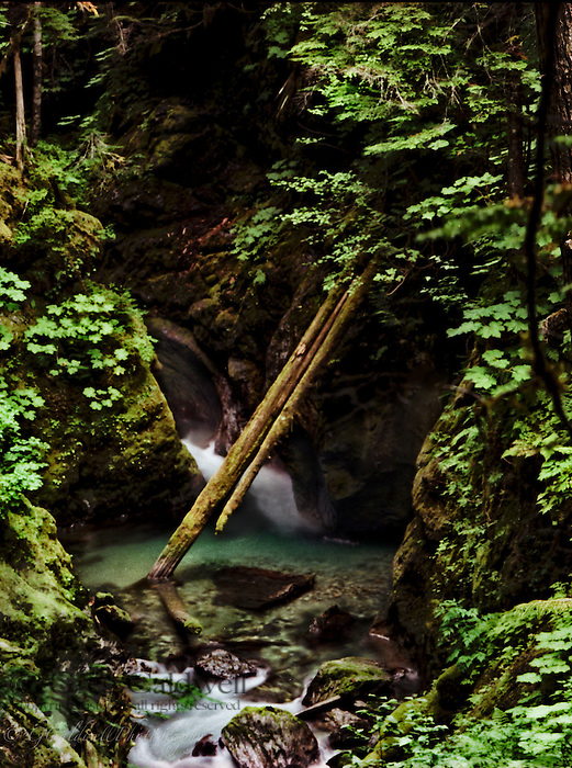 Ruth Creek is a rugged canyon in the North Cascades. Dark fairy land with many pools and grottos.