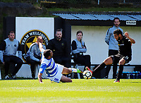 Paul Ifill (left) and Mario Barcia compete for the ball during the ISPS Handa Premiership football match between Team Wellington and Tasman United at David Farrington Park in Wellington, New Zealand on Sunday, 12 November 2017. Photo: Dave Lintott / lintottphoto.co.nz