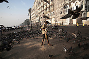 A young man is seen distributing grains to the pigeons outside the Taj Mahal Hotel, one of the sites of the 2008 terrorist attacks, in Mumbai, India. Photograph: Sanjit Das
