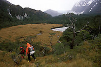 Dr. Gino Casassa and Dr. Harald Biester haul equipment over a rough trail to the Lengua glacier, passing a huge peat bog that acts as a repository for thousands of years of data on vegetation and atmospheric conditions. Wood samples washed out of the bog by the river pictured will be carbon dated, and the rings in the wood -- preserved in the oxygen-starved depths of the bog for thousands of years -- will be studied for ancient weather patterns.