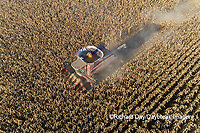 63801-12416 Harvesting corn in fall-aerial  Marion Co. IL