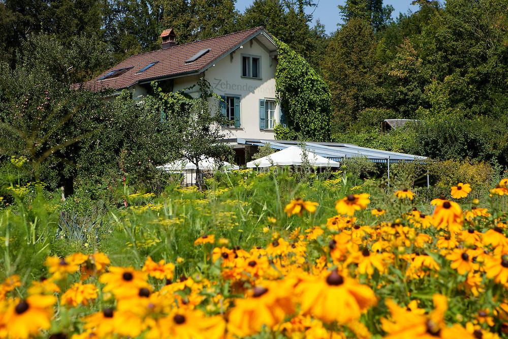 Zehendermätteli, Bern, Switzerland, 26 August 2011