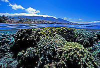 Above and below view of coral and the West Maui Mountains at Lahaina, Maui.