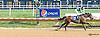 Tori's Guy winning at Delaware Park on 9/2/15 Brian Pedroza's 4th win of the day!