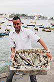 BRAZIL, Rio de Janiero, a Fishermen brings in a tub of fresh caught fish, Harbor Praca XV