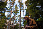 Brendan, Irish activist at Upper Florentine treesit protest, Tasmania. Protestors have blocked the forest access road made by contractors for Forestry Tasmania, in order to stop the logging of old growth forest in what is potentially a World Heritage Area...