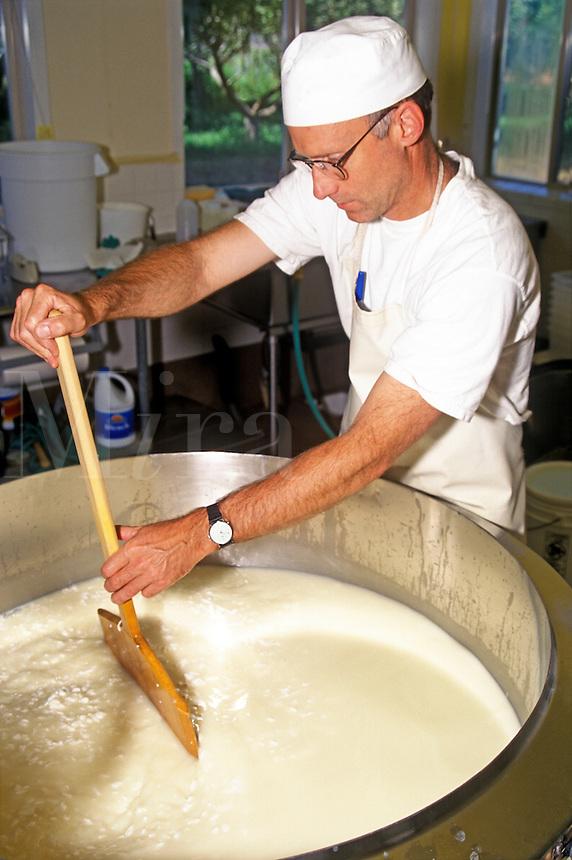 Juniper Grove Farm owner Pierre Kolisch stirs a vat of curds while making cheese. Redmond, Oregon, USA