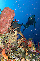 Underwater scenic with diver at Vertigo in Annaly Bay, .St. Croix.US Virgin Islands