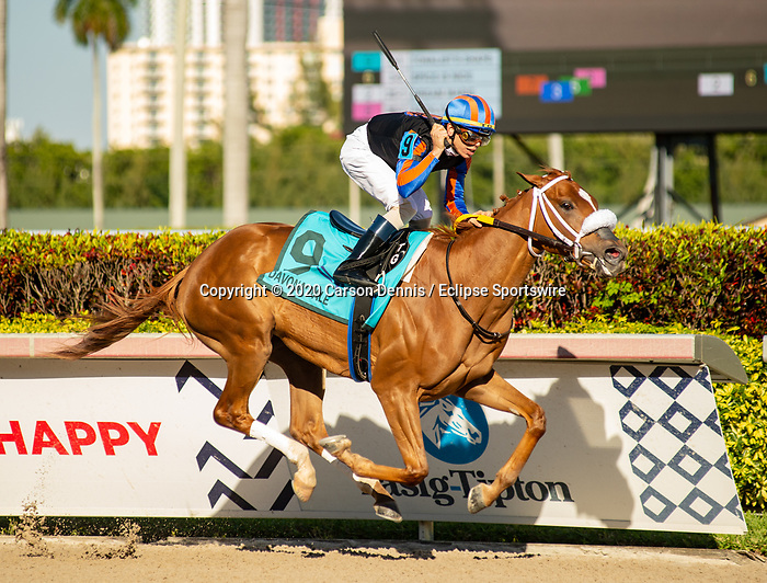 February 29, 2020: #9, TONALIST'S SHAPE stays perfect with Jockey Tyler Gaffalione for Trainer Saffie Joseph, Jr. at Gulfstream Park on February 29, 2020 in Hallandale Beach, FL. (Photo by Carson Dennis/Eclipse Sportswire/CSM)
