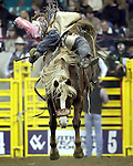 1/24/09--Photo by Rick Davis--PRCA cowboy Bryan Jones of Elko, Nevada scores a 76 point bareback bronc ride on the Calgary Rodeo Company bronc Juvenile Quest during action at the 103rd National Western Stock Show and Rodeo in Denver, Colorado.
