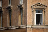 Roma, Lazio, 23.11.2014. En nonne følger nøye med fra et vindu i vatikanet under søndagsmessen. Bilder til feature om båndene mellom Vatikanet, Ndrangheta og den italienske stat. Foto: Christopher Olssøn.
