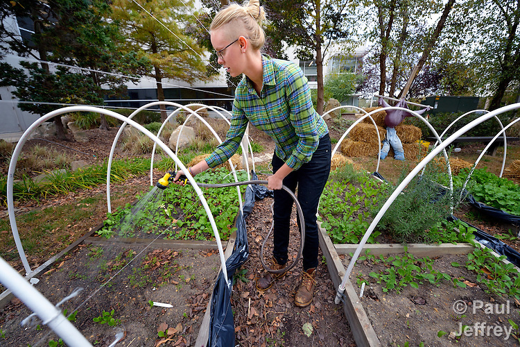 Erika Brandt, a volunteer, waters the garden which provides fresh vegetables for the Food Pantry of Urban Ministries of Wake County in Raleigh, North Carolina.