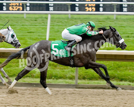 Macho Star winning at Delaware Park on 6/16/09