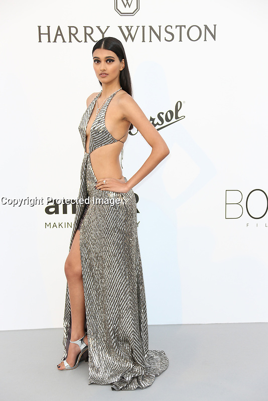 NEELAM GILL<br /> amfAR Gala Cannes 2017 - Arrivals<br /> CAP D'ANTIBES, FRANCE - MAY 25 arrives at the amfAR Gala Cannes 2017 at Hotel du Cap-Eden-Roc on May 25, 2017 in Cap d'Antibes, France