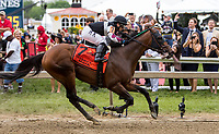 BALTIMORE, MD - MAY 20: Recruiting Ready  #7, ridden by Horacio Karamanos, wins the Chick Lang Stakes on Preakness Stakes Day at Pimlico Race Course on May 20, 2017 in Baltimore, Maryland.(Photo by Sue Kawczynski/Eclipse Sportswire/Getty Images)