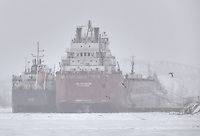 Shrouded by blowing snow off Lake Huron, The Algoma Central Corporation's Algosar and the Canadian Steamship Lines Assiniboine berthed in the North Slip of Sarnia Harbour for winter maintenance. In the background is the Blue Water Bridges.