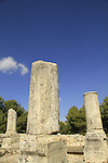 Israel, Upper Galilee, Nevoraya ancient Synagogue in Biria forest