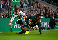 bSouth Africa's Sibusiso Nkosi scores his sides first try<br /> <br /> Photographer Bob Bradford/CameraSport<br /> <br /> Quilter Internationals - England v South Africa - Saturday 3rd November 2018 - Twickenham Stadium - London<br /> <br /> World Copyright © 2018 CameraSport. All rights reserved. 43 Linden Ave. Countesthorpe. Leicester. England. LE8 5PG - Tel: +44 (0) 116 277 4147 - admin@camerasport.com - www.camerasport.com